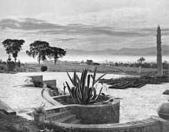 The garden of Villa Isola